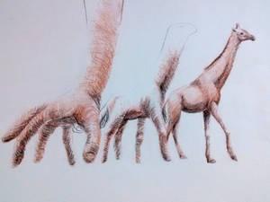 Giraffe Hands