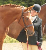 Horse 20 by Girlehs-Stock