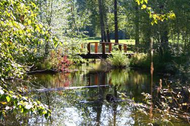 Pretty Pond by victizzle-mofo