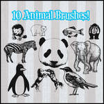 10 Animal Brushes