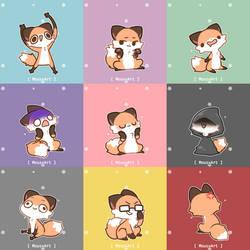 Many faces of Fox