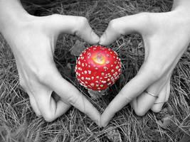 magic mushroom by 01-11-89