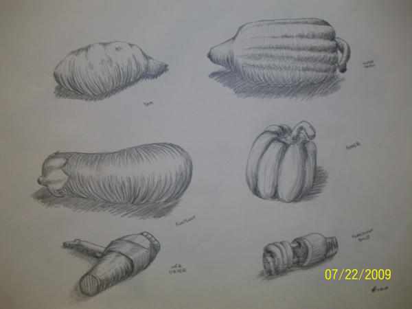 Cross Contour Line Drawing Fruit : Cross contour still life by maeoneechan on deviantart