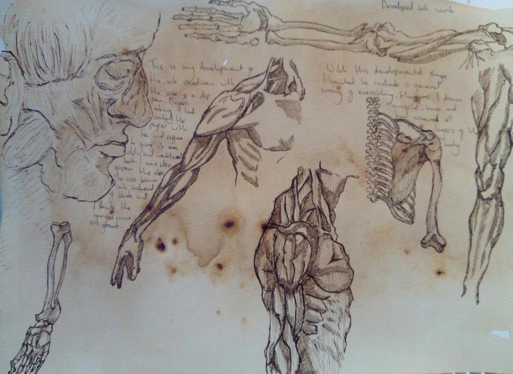 Exploration of Anatomy  by JosephFletcher