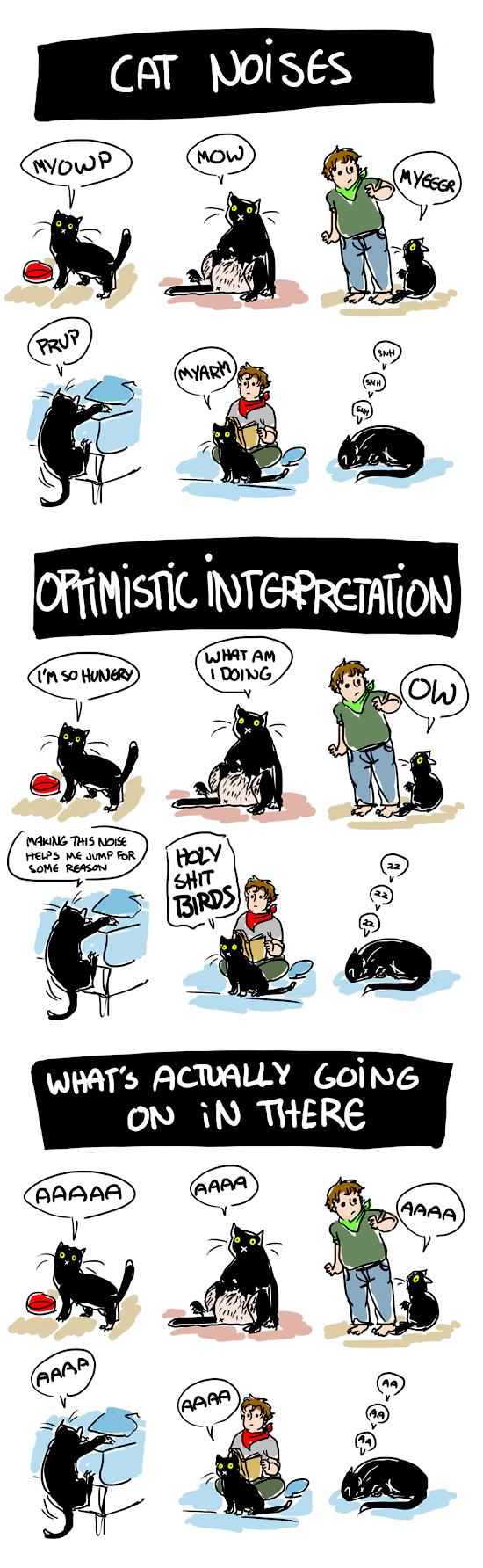 good cat names
