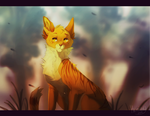 lionblaze by hioming