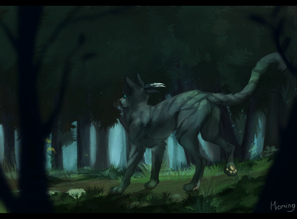 http://fc09.deviantart.net/fs71/i/2013/215/7/7/jayfeather_by_hioming-d6gg3ra.png