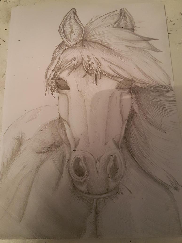 Horse by batdragonpurple