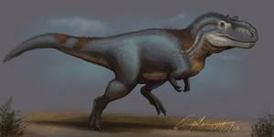 Albertosaurus Sketch