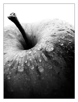 Apple Black and White