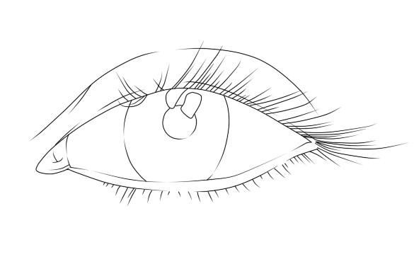 Line Drawing Eye : Eye lineart by d aare on deviantart