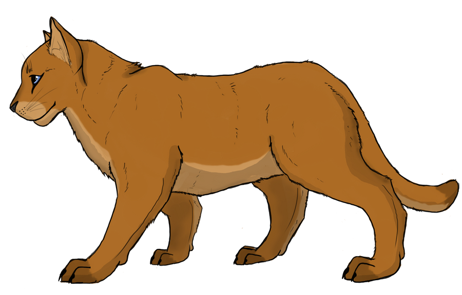 cougar puma mountain lion 2 by animalible on deviantart rh animalible deviantart com mountain lion head clipart mountain lion clipart free