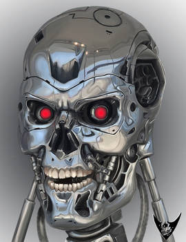 The T800