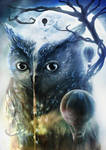 Owl Planet