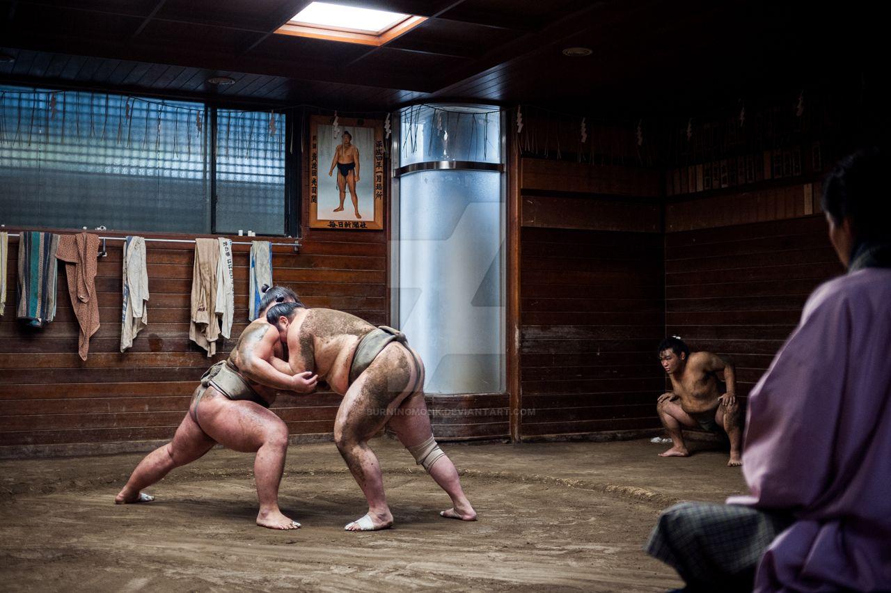 Sumo by burningmonk
