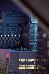 Urban Nest by burningmonk