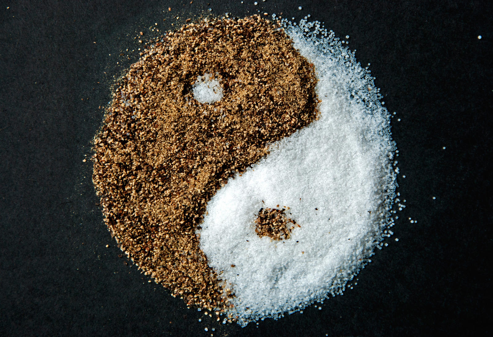 Salt and Pepper Yin-Yang by RollingFishays