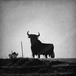 el toro by adamlack