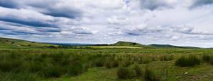 Moorland