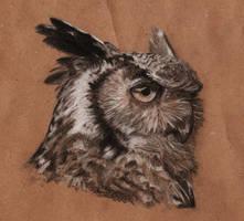Owl portrait by Sherlockian