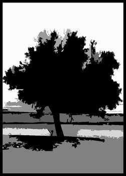 The Cigar Tree