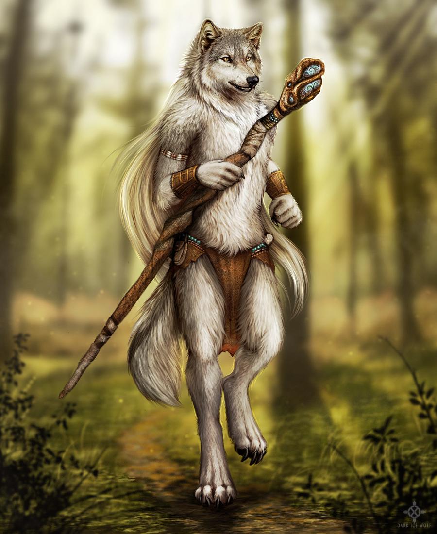 Forest Shaman by DarkIceWolf