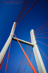 most by NikodemDyzma