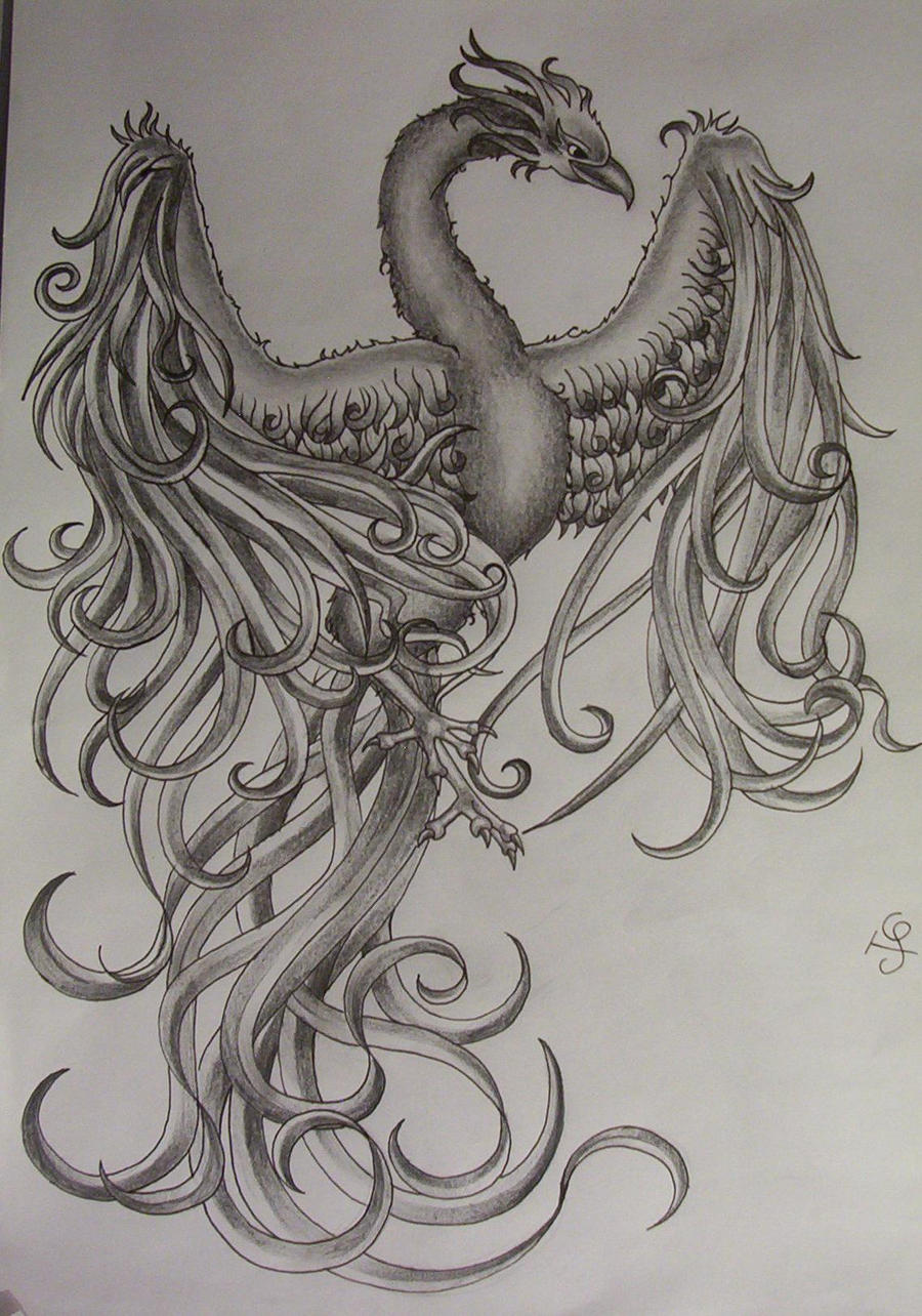 phoenix tattoo design by *tattoosuzette on deviantART