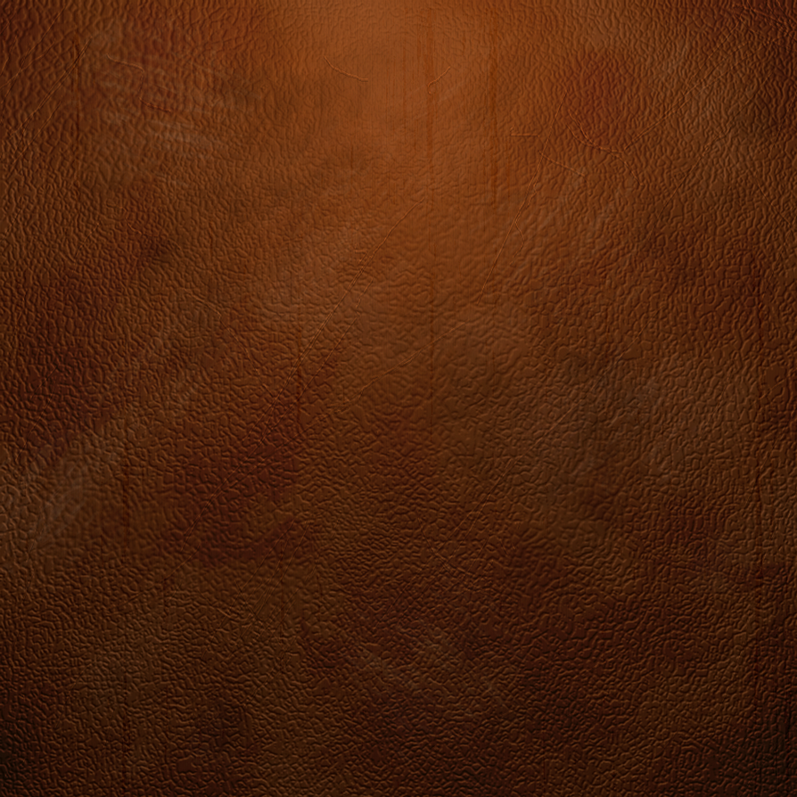 Brown Leather Texture by MaxDaten