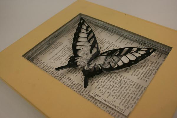 Swallowtail by zenturtle651692