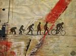 .:evolution:.