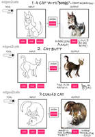 Testing edges2cats by Toxoplasmosis-Cat