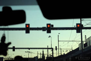 Traffic lights to the jungle by LuciusThePope