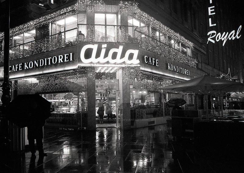 rainy Night in Vienna by Engelsblut24