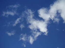 Free as a Cloud by Sascia