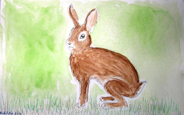 Bunny by NycterisA