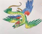 Parrot dragon