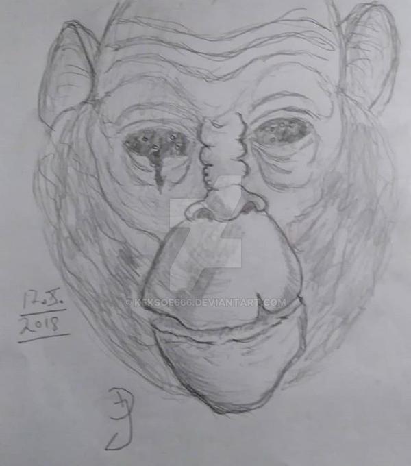 Day 17-Space Monkey by Keksoe666