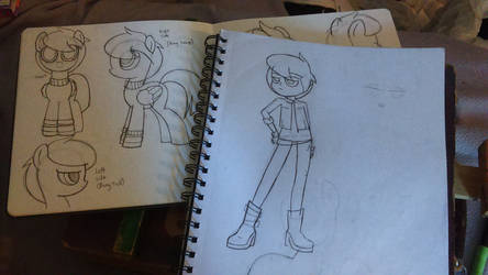 Willow Sketches