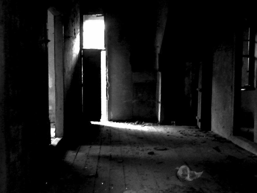 in a dark dark house pdf