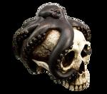 Skull #02