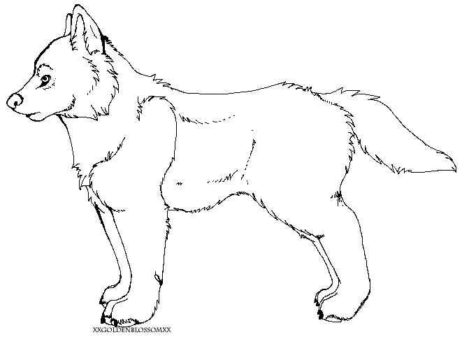 Wolf Lineart by XxGoldenBlossomxX