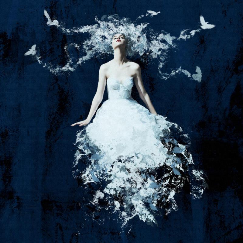 the white crow - photo #33