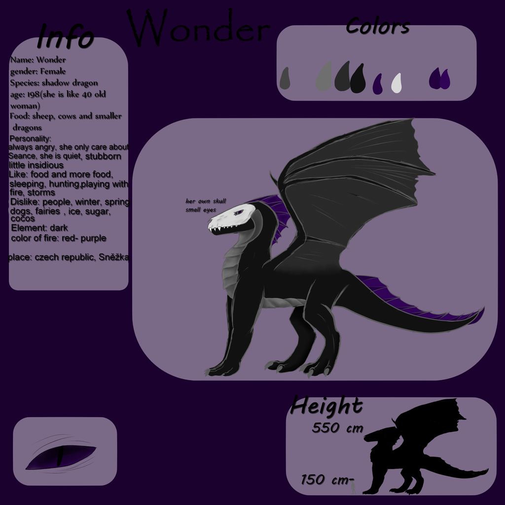dragon reference - Wonder by Mikiseek