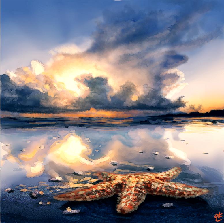Beach and starfish by yandere-Yuno