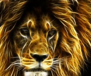 rastafari00's Profile Picture
