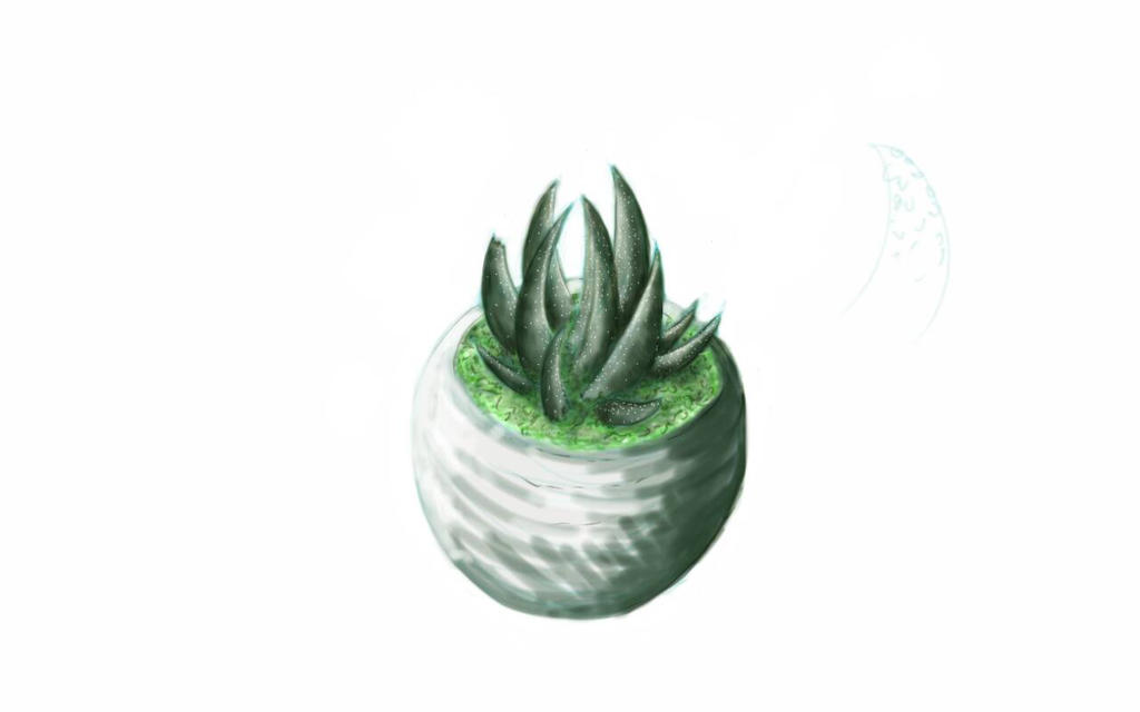 Succulent cacti quick sketch by Ronin-kin
