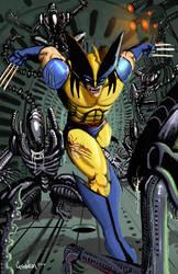 Wolverine vs Aliens 6 argh :? by Sapoman