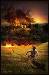 Wildfire by Iribel