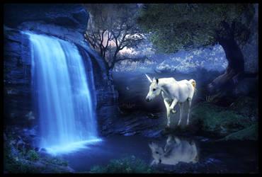 Unicorn by Iribel